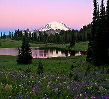 Pastel Skies Over Rainier by Marcus Angeline