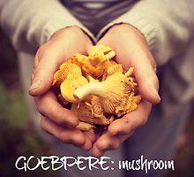 South Saami Mushrooms by Eoghansandberg
