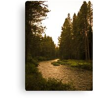 river highway Canvas Print