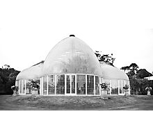 The palm house at Bicton House Photographic Print