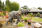 Elephant Fountain - Bicton Gardens by Tim Topping