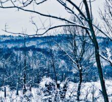 Winter Wonderland in Blue Sticker