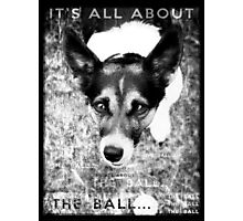 Terrier Obsession: It's All About The Ball - Black and White Remix Photographic Print