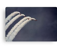 Flying high with the reds Canvas Print