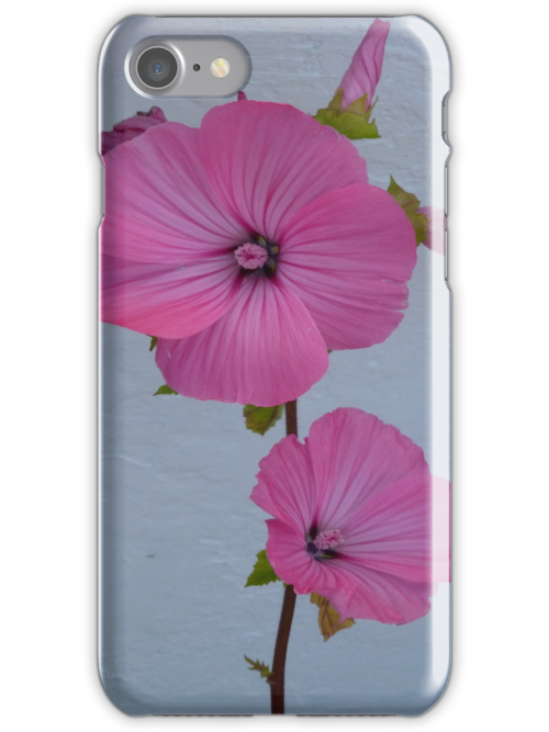 Felicity iPhone Case by Fara