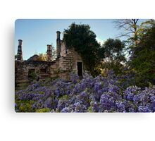 Eurama Ruins - Faulconbridge NSW Canvas Print