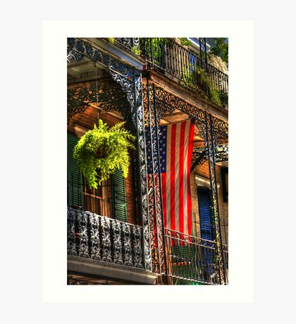 Ferns and Flags Art Print