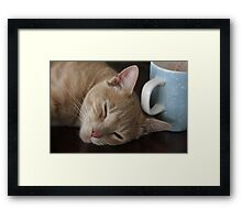 Who Spiked The Coffee? Framed Print