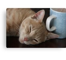 Who Spiked The Coffee? Canvas Print