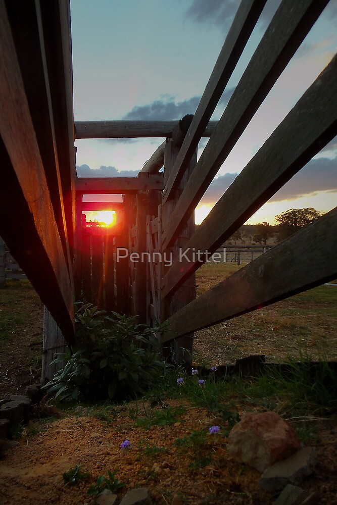 The Loading Ramp by Penny Kittel