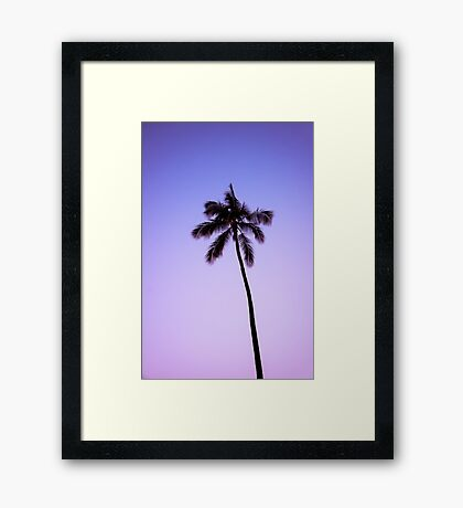 palm tree ver.violet Framed Print