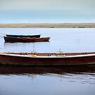 Rowing boats on the Fleet by Gary Heald LRPS