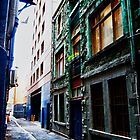 Green house, Melbourne Alley by PatrickLawrence