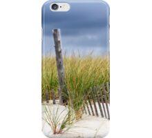 Winter Beach iPhone Case/Skin