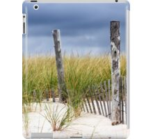 Winter Beach iPad Case/Skin