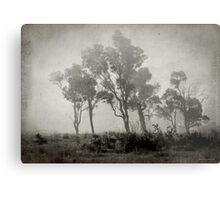 Misty Field Metal Print