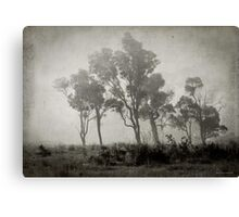 Misty Field Canvas Print