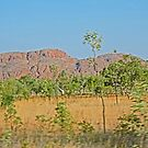 Scenery, Wyndham to Kununurra, Western Australia by Margaret  Hyde