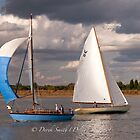 Blue & White 58 by Delboy10