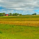 Minnesota Farm Land by Bryan D. Spellman