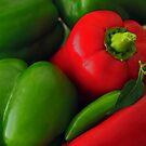 Pepper Harvest by Lynn Gedeon