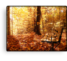A Forest Bench in a Fall Scene Canvas Print