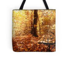 A Forest Bench in a Fall Scene Tote Bag