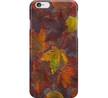 iPhone Case of painting...Autumn leaves...natures gift to me... iPhone Case/Skin