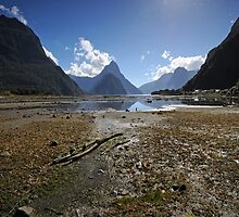 Milford Sound by Simone Kelly