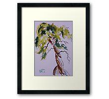 Cypress Curves Framed Print