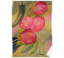 Gulf Ruby Plums  Poster