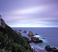 Nugget Point by Simone Kelly