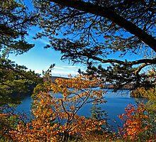 Meech Lake viewed through Fall Foliage by Chantal PhotoPix