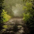 Misty Woodland Lane II by John Dunbar