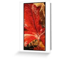 Fall Calmness  Greeting Card