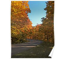 A Country Road lined with Yellow Leaved Trees Poster