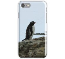 Lone Penguin iPhone Case/Skin