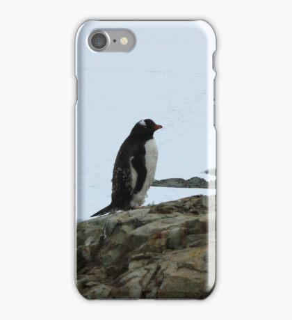 Lone Penguin iPhone Case/Skin
