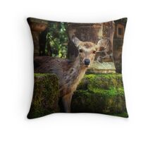 Hello there... Throw Pillow