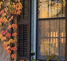 Window Framed in Autumn Coloured Ivy by Gerda Grice