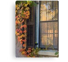 Window Framed in Autumn Coloured Ivy Metal Print
