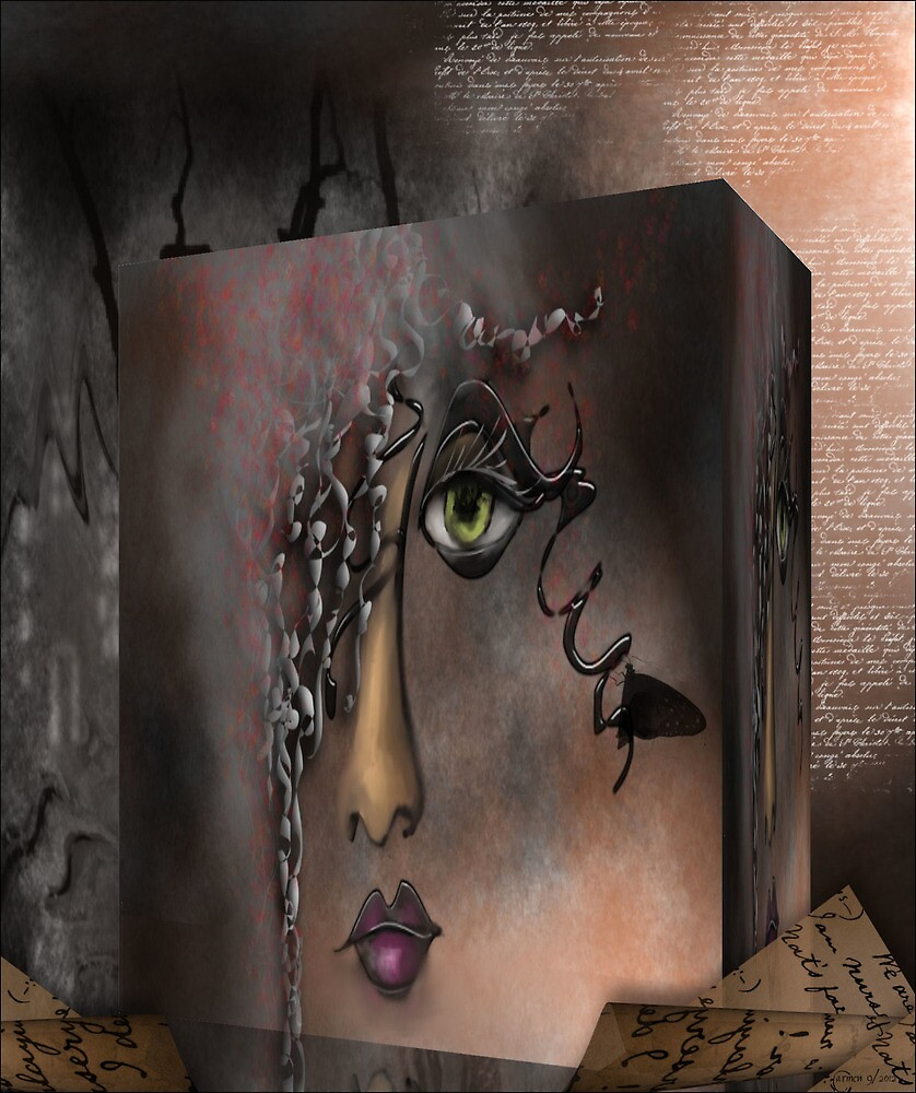 Lost in a Box by Carmen Holly