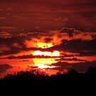 Blazing Sunset in September by John Carpenter
