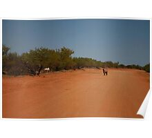 Outback Goat Track Poster