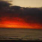 Red Sky - Perth by cactus82