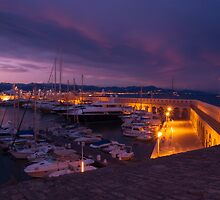 Port of Antibes by Jim Hellier