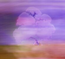 Mistflower abstract by Julia Harwood