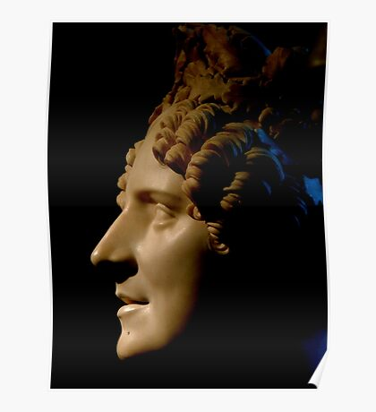 Marble Bust in Profile Poster