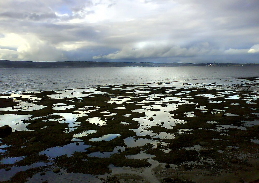 Holywood Beach, Co. Down (1) by holden
