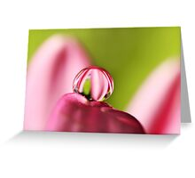 Candy Stripe with Green Greeting Card